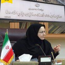 معاون اقتصادی استاندار سیستان و بلوچستان: سود فروش سوخت مرزی به حساب سرپرستان خانوارهای استان واریز شد