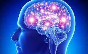 روشهایی برای بهبود عملکرد مغز در سال نو